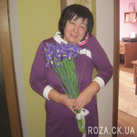 25 irises - Photo 1