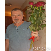 7 red roses - Photo 6