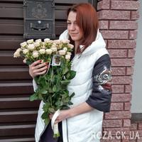 Купить розы спрей - Фото 1