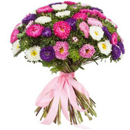 Large bouquet aster - flowers and bouquets on roza.ck.ua