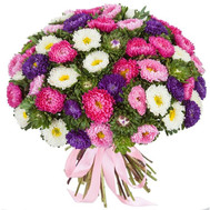 Bouquet 101 aster Cherkassy - flowers and bouquets on roza.ck.ua