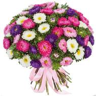 """""""Букет 101 астра Черкассы"""" в интернет-магазине цветов roza.ck.ua"""