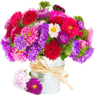 A small bouquet of asters - flowers and bouquets on roza.ck.ua