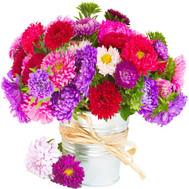"""""""Небольшой букет из астр"""" в интернет-магазине цветов roza.ck.ua"""