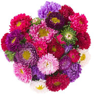 """""""Яркий осенний букет"""" в интернет-магазине цветов roza.ck.ua"""