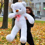 Teddy Bear 1.6 m - flowers and bouquets on roza.ck.ua