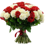 """51 red and white rose"" in the online flower shop roza.ck.ua"