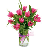 11 pink tulips - flowers and bouquets on roza.ck.ua