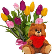 11 tulips and a bear - flowers and bouquets on roza.ck.ua