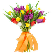 Букет из 25 тюльпанов - цветы и букеты на roza.ck.ua