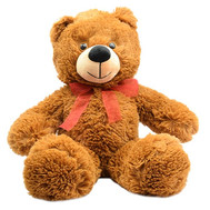 Teddy Bear 50 cm - flowers and bouquets on roza.ck.ua