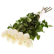 Delicate imported roses - flowers and bouquets on roza.ck.ua