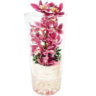 Branch of a red orchid in glass - flowers and bouquets on roza.ck.ua