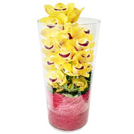 Yellow orchid Cymbidium in a glass vase - flowers and bouquets on roza.ck.ua