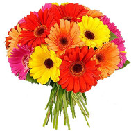 """Round bouquet of gerberas"" in the online flower shop roza.ck.ua"