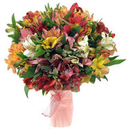 31 alstroemerias in bouquet - flowers and bouquets on roza.ck.ua