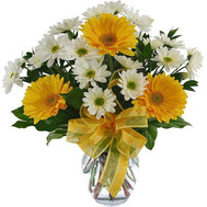 Bouquet of gerberas and chrysanthemums - flowers and bouquets on roza.ck.ua