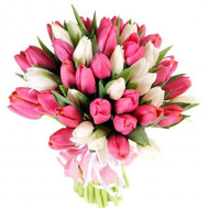 """Bouquet of tulips Cherkassy"" in the online flower shop roza.ck.ua"