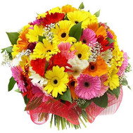 Buy Gerberas Cherkasy - flowers and bouquets on roza.ck.ua