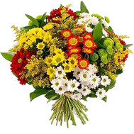 Multicolored bouquet of chrysanthemums - flowers and bouquets on roza.ck.ua
