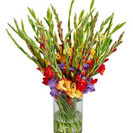 35 gladiolus in a bouquet - flowers and bouquets on roza.ck.ua