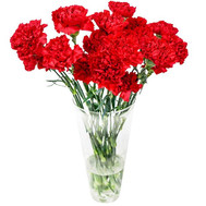 Carnations in a bouquet - flowers and bouquets on roza.ck.ua