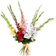 A small bouquet of gladiolus - flowers and bouquets on roza.ck.ua