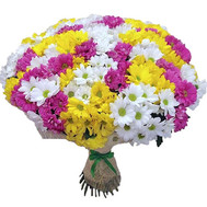 51 multi-colored chrysanthemum - flowers and bouquets on roza.ck.ua