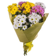 Bouquet of multicolored chrysanthemums - flowers and bouquets on roza.ck.ua