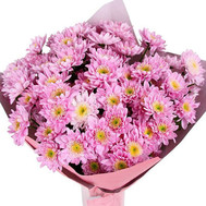 """Cute bouquet of pink chrysanthemums"" in the online flower shop roza.ck.ua"
