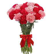31 carnations in a bouquet - flowers and bouquets on roza.ck.ua