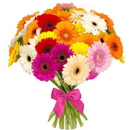 41 gerbera mix - flowers and bouquets on roza.ck.ua