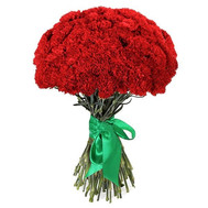 51 red carnations - flowers and bouquets on roza.ck.ua