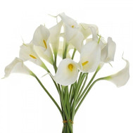 Snow white callas in bouquet - flowers and bouquets on roza.ck.ua