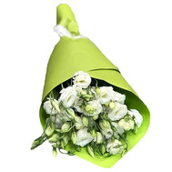 White eustoma bouquet - flowers and bouquets on roza.ck.ua