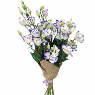 Bouquet of 9 lisianthus - flowers and bouquets on roza.ck.ua