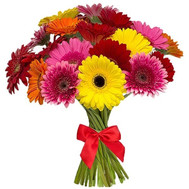 Colorful bouquet of gerberas - flowers and bouquets on roza.ck.ua