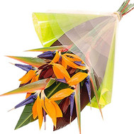 """Strelitzia in the man's bouquet"" in the online flower shop roza.ck.ua"