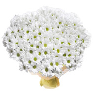"""Large bouquet of chrysanthemums"" in the online flower shop roza.ck.ua"