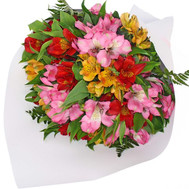 """Bouquet of alstroemerias in paper"" in the online flower shop roza.ck.ua"