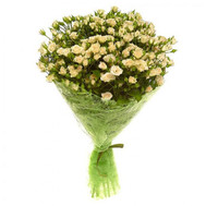 Bouquet of 25 roses - flowers and bouquets on roza.ck.ua