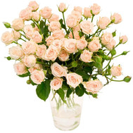 """Bouquet of rose spray"" in the online flower shop roza.ck.ua"