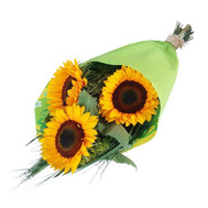 Bouquet of sunflowers - flowers and bouquets on roza.ck.ua