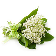 """A bouquet of lilies of the valley"" in the online flower shop roza.ck.ua"