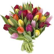 Букет тюльпанов с доставкой - цветы и букеты на roza.ck.ua