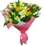 Classic bouquet of alstroemerias - flowers and bouquets on roza.ck.ua