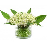 Buy lilies of the valley in Cherkassy - flowers and bouquets on roza.ck.ua