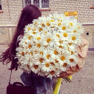 """""""Огромный букет ромашек"""" в интернет-магазине цветов roza.ck.ua"""