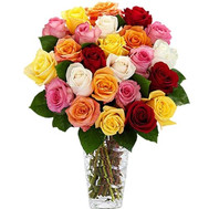 25 multicolored roses - flowers and bouquets on roza.ck.ua