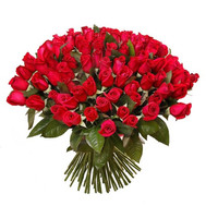 101 red imported rose - flowers and bouquets on roza.ck.ua